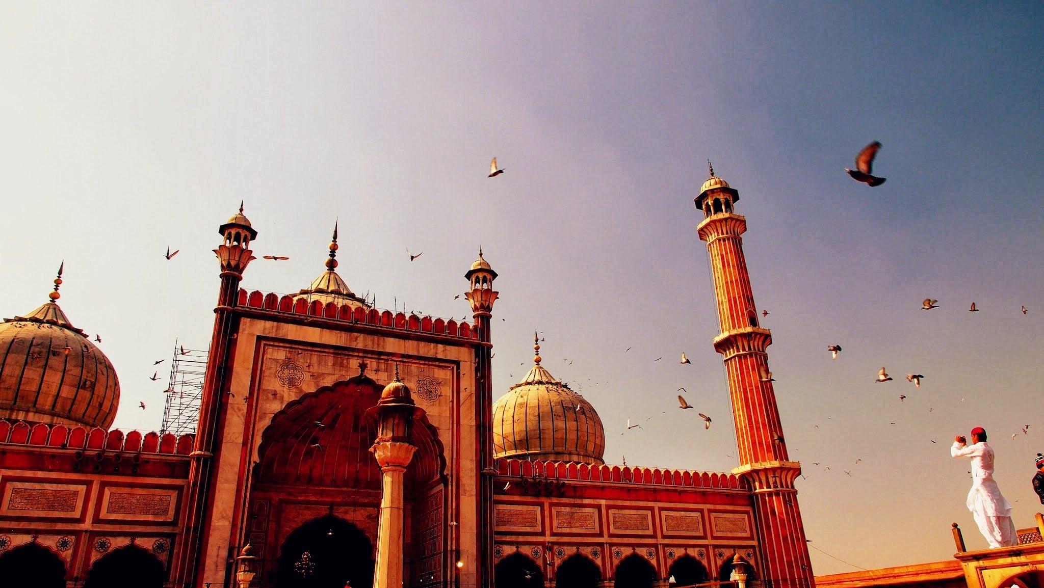 Электронная виза в Индию по прибытию